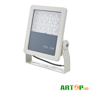 F Series LED Flood Light